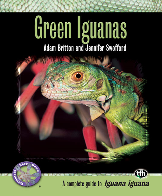 Green Iguanas (Complete Herp Care)