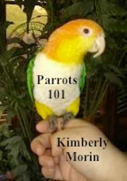 Parrots 101 By: Kimberly Morin