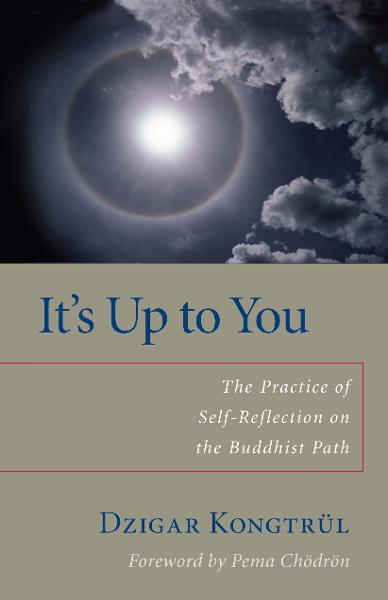 download It's Up to You: The Practice of Self-Reflection on the Buddhist Path book