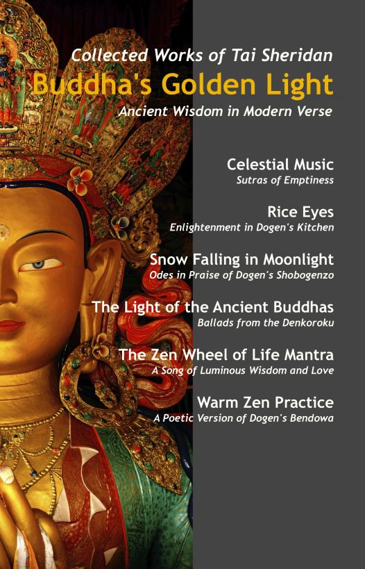 Buddha's Golden Light: Six Classic Buddhist Teachings in Modern Verse By: Tai Sheridan, Ph.D.