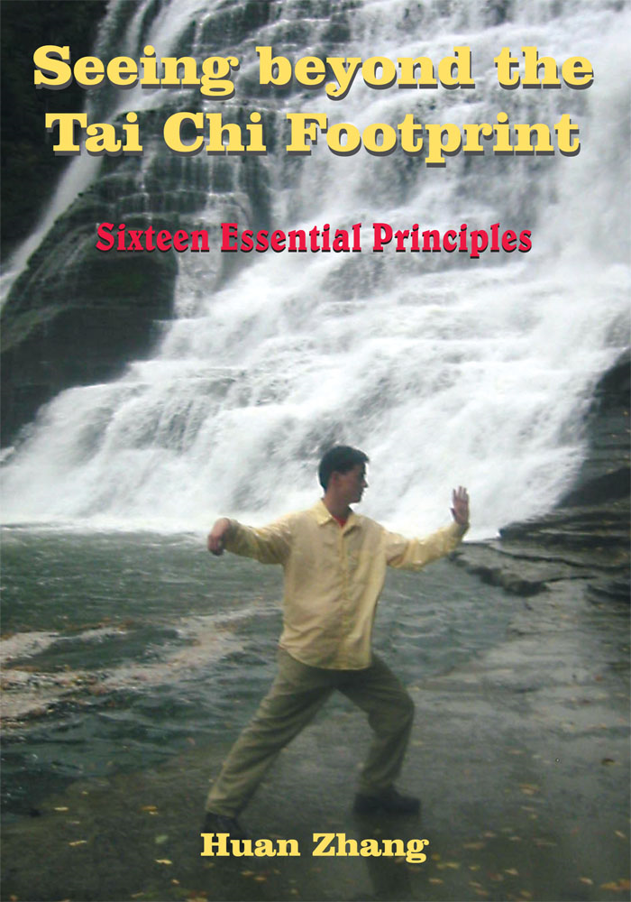 Seeing beyond the Tai Chi Footprint