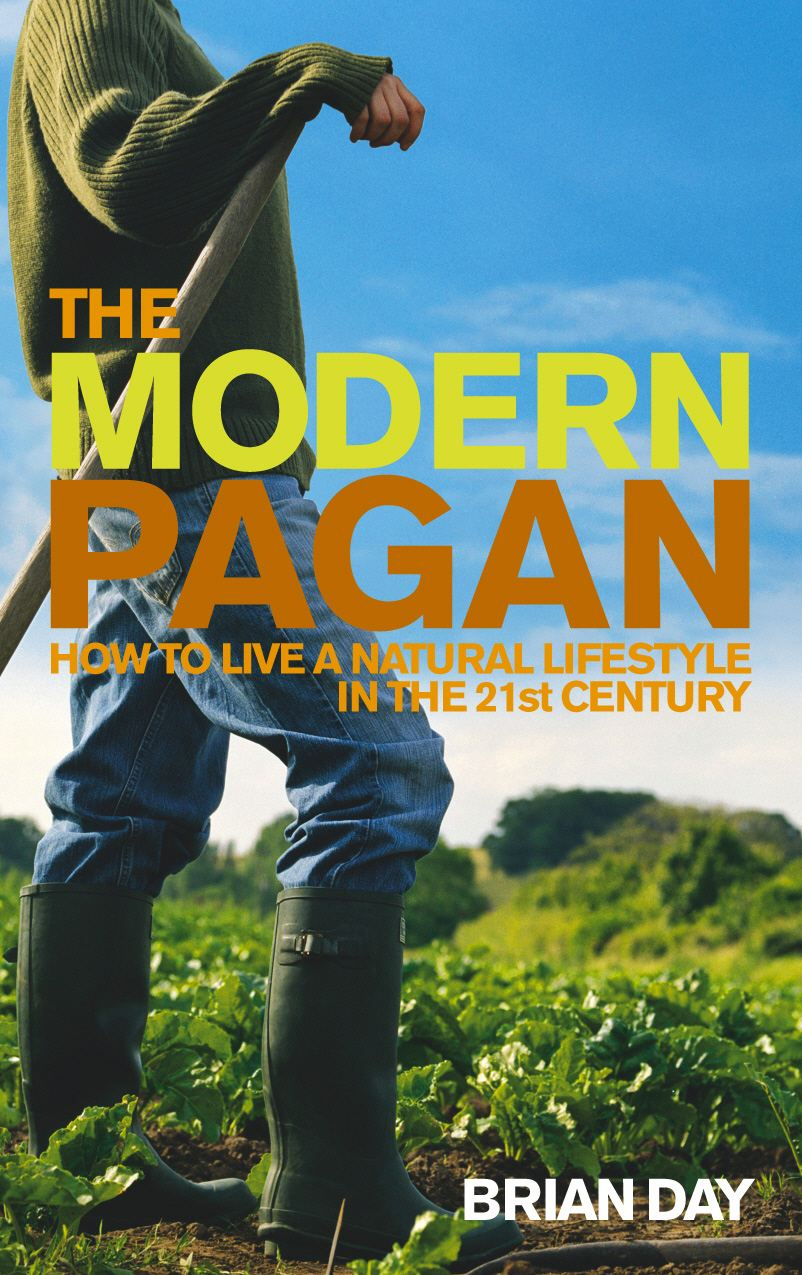 The Modern Pagan How to live a natural lifestyle in the 21st Century