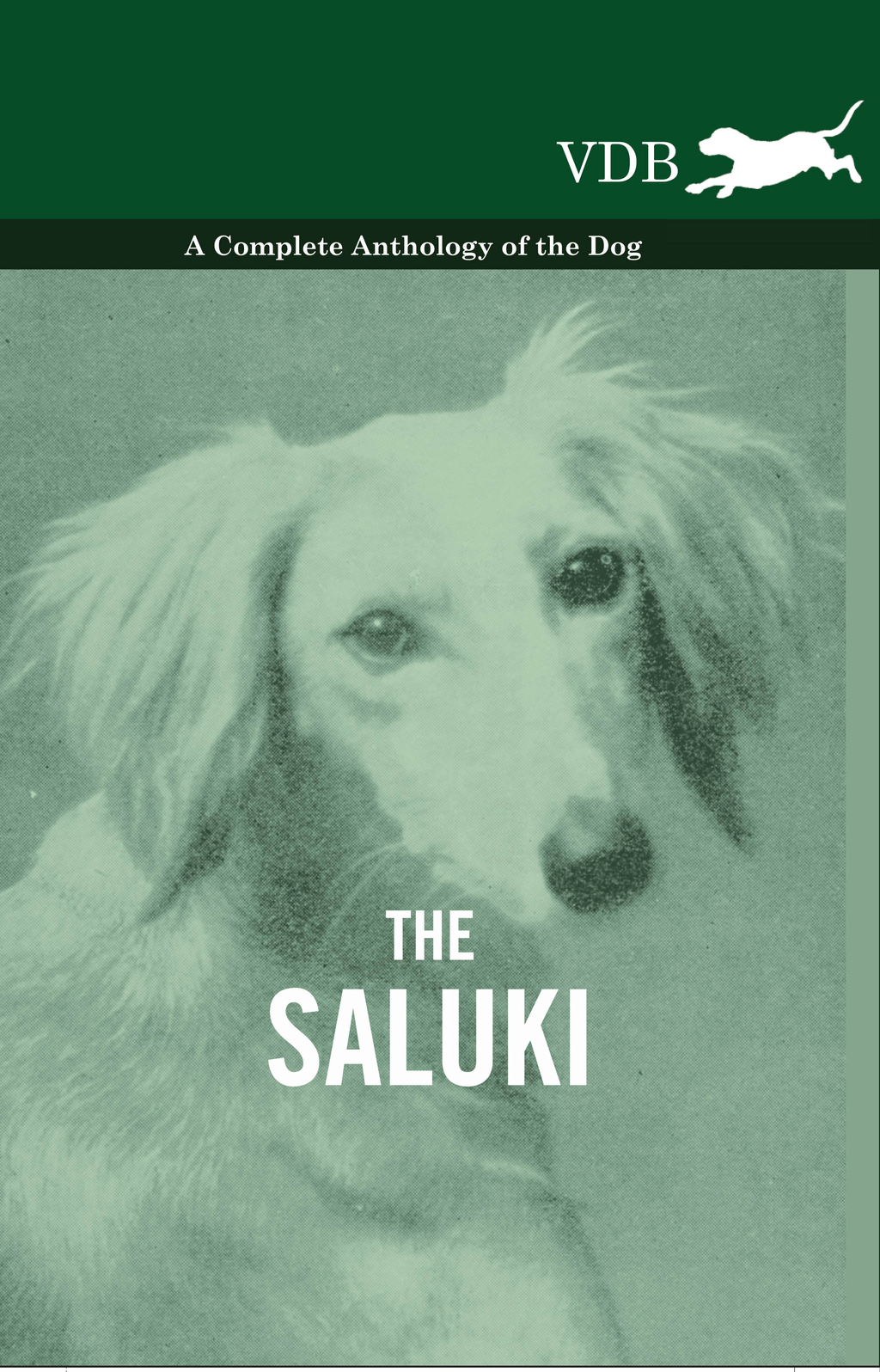 The Saluki - A Complete Anthology of the Dog By: Various Authors
