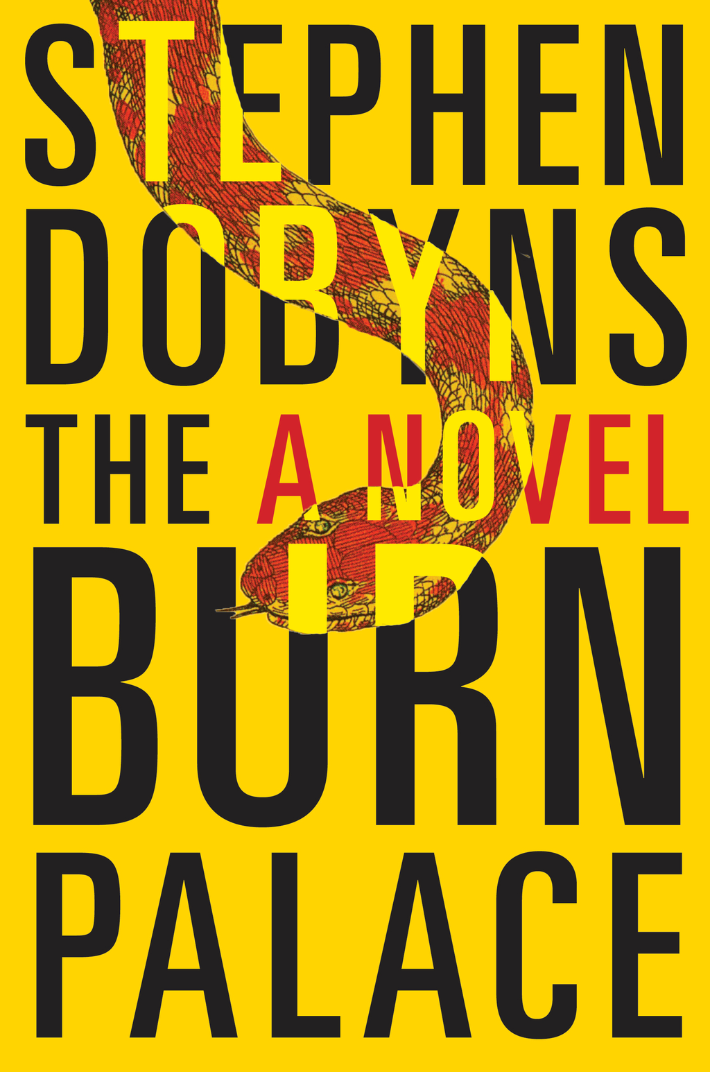 The Burn Palace By: Stephen Dobyns