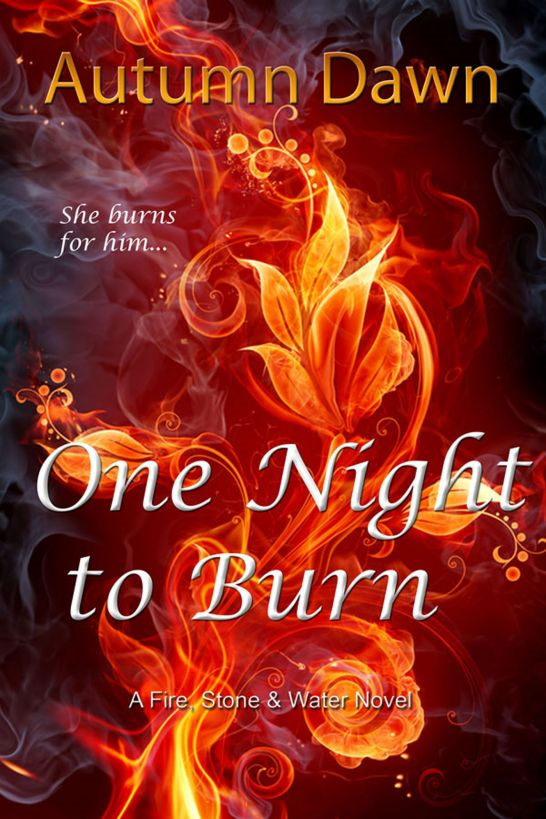 One Night to Burn By: Autumn Dawn