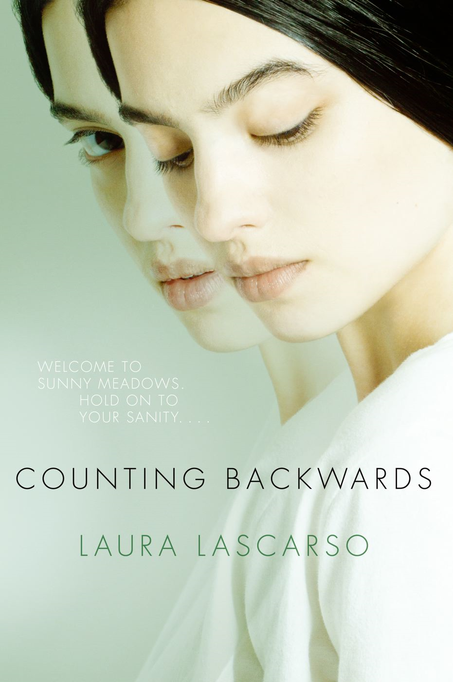 Book Cover: Counting Backwards