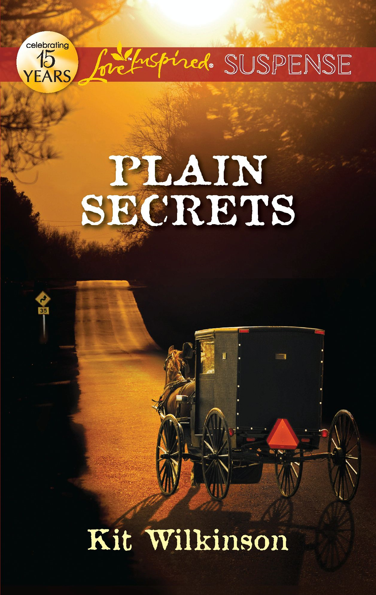 Plain Secrets By: Kit Wilkinson