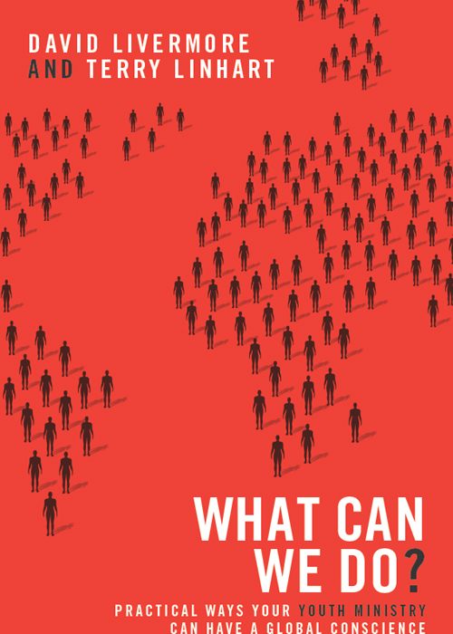 What Can We Do? By: David   Livermore,Terry   Linhart