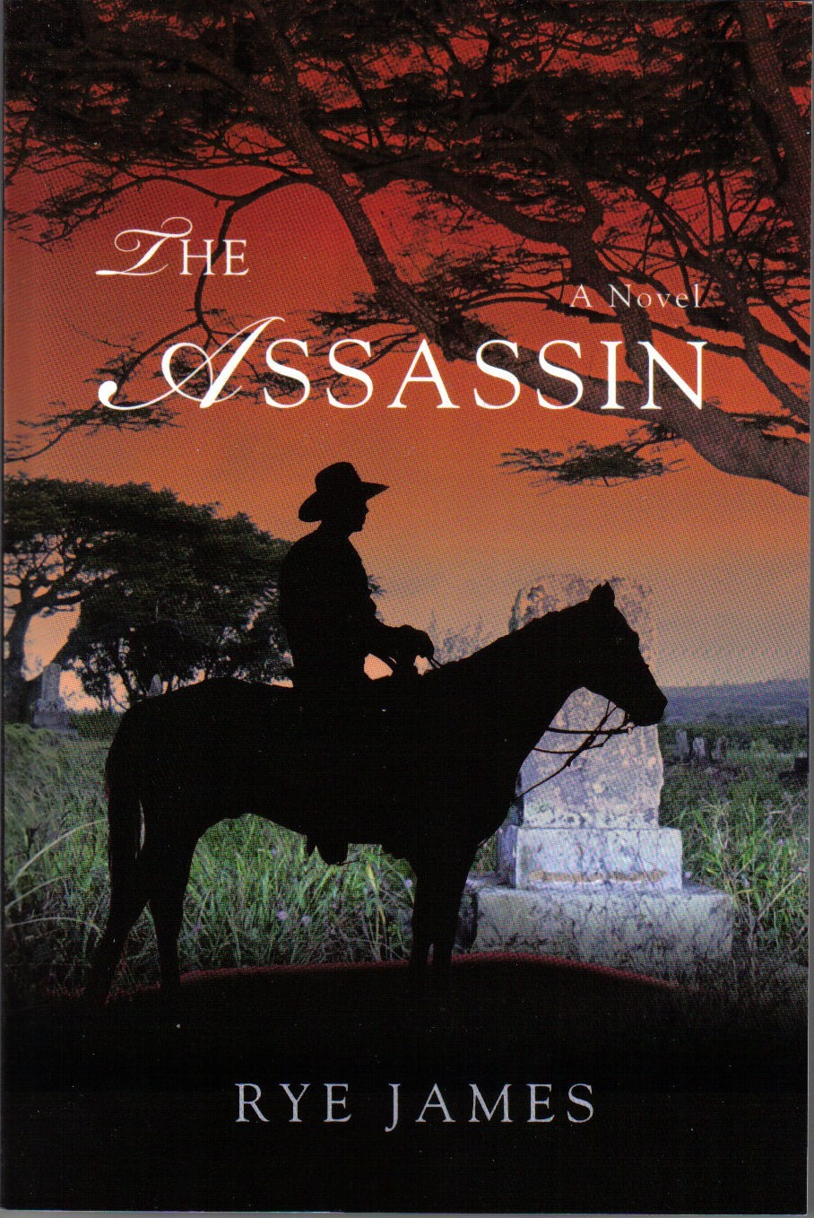 The Assassin By: Rye James
