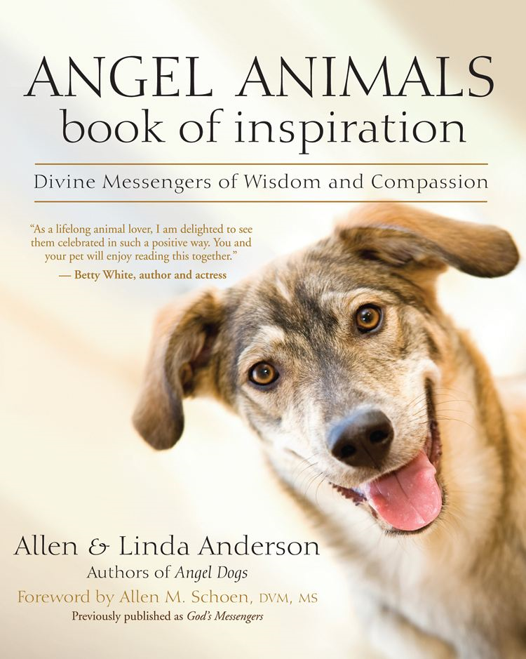 Angel Animals Book of Inspiration By: Allen Anderson,Linda Anderson