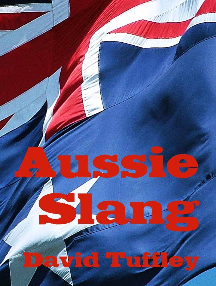 Australian Slang: A Guide to Vernacular Australian English By: David Tuffley