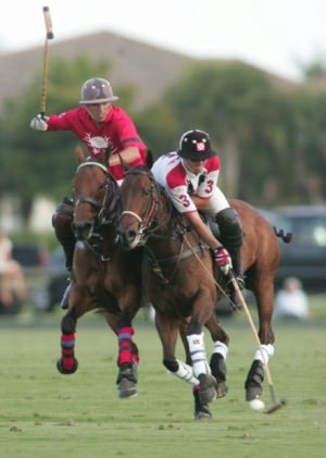 How to Play Polo By: Brian Medlin