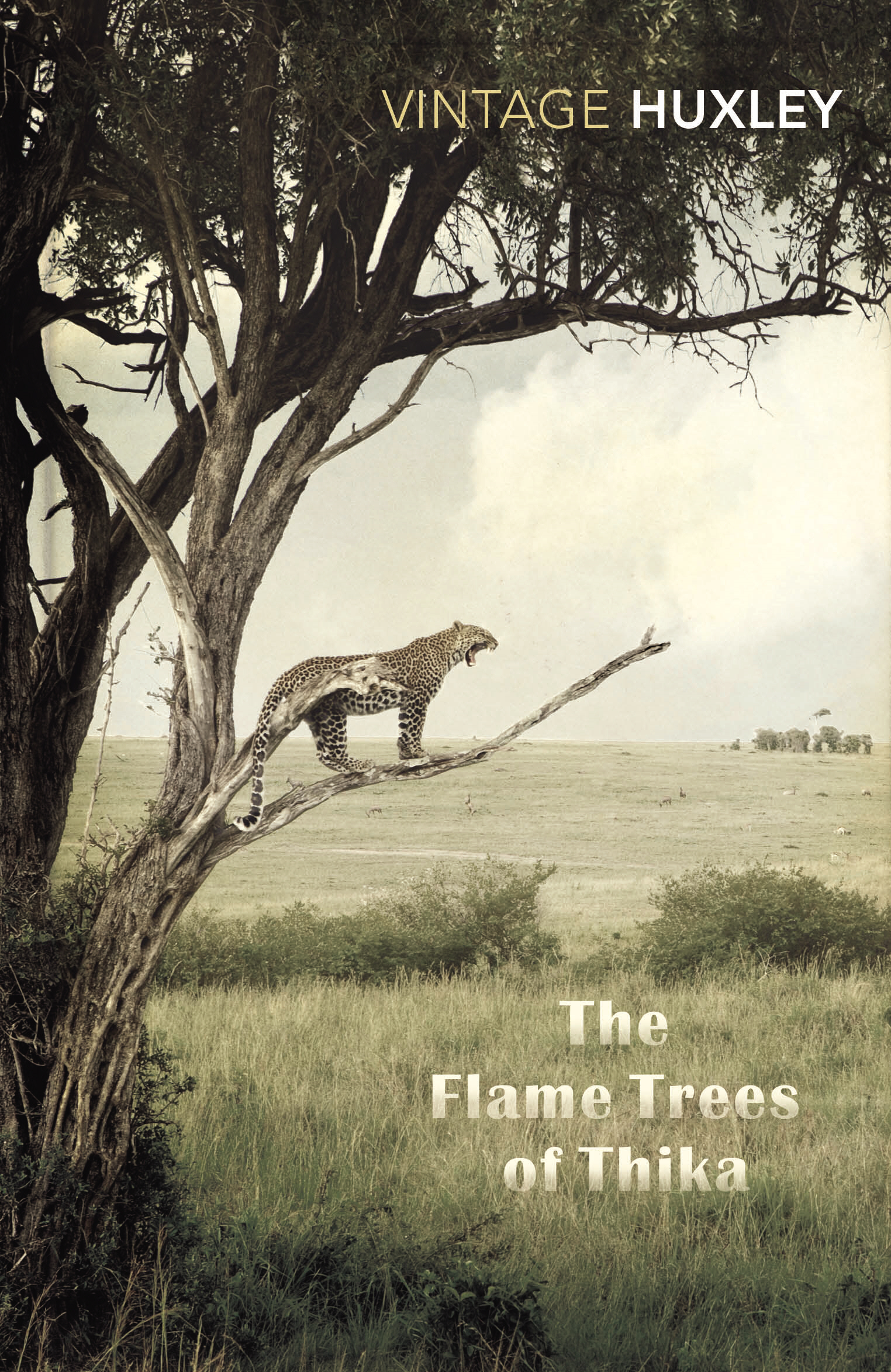 The Flame Trees Of Thika Memories of an African Childhood