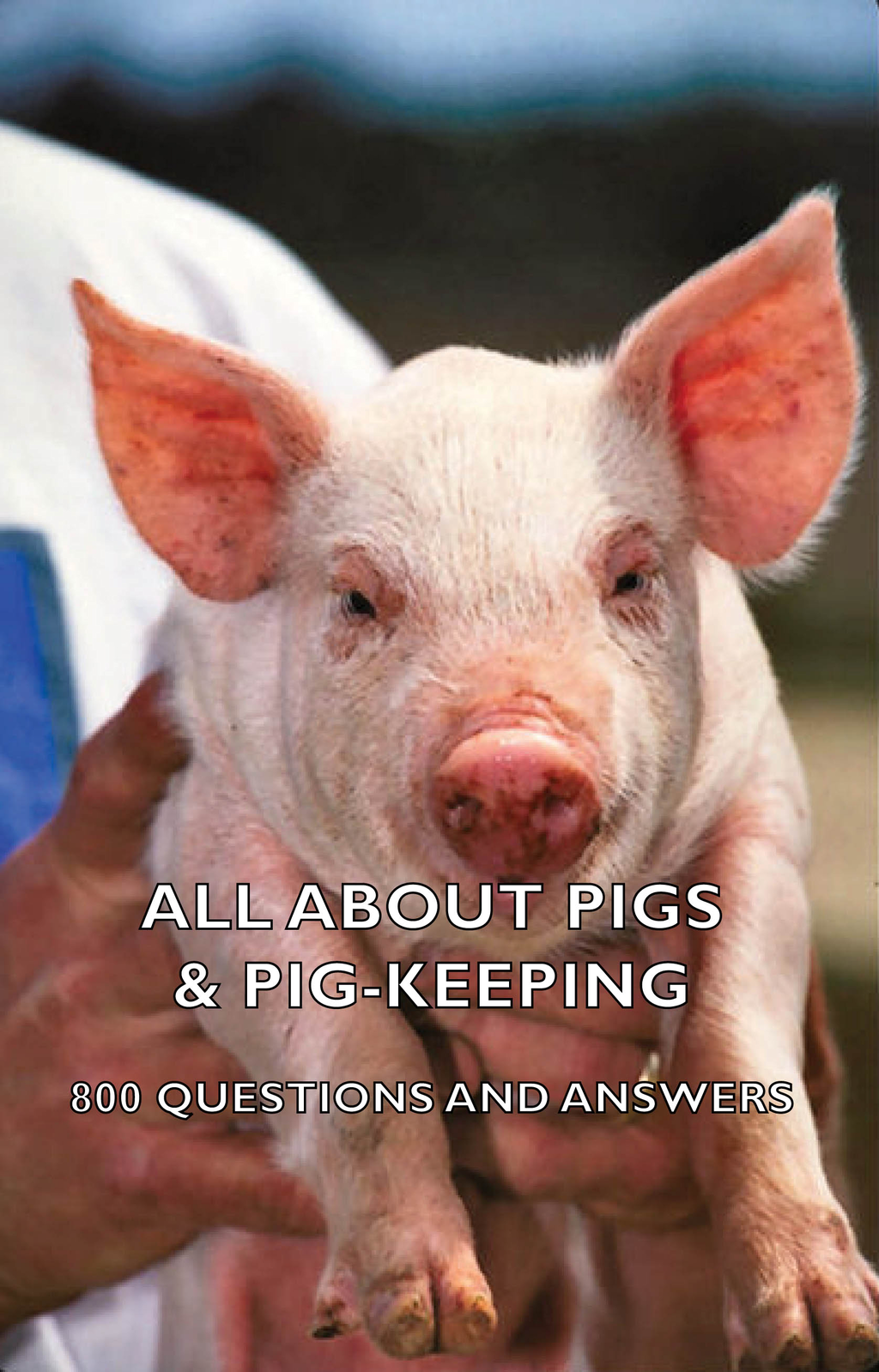 All About Pigs & Pig-Keeping - 800 Questions and Answers By: Various