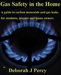 online magazine -  Gas Safety in the Home A guide to Carbon Monoxide and Gas Leaks for Tenants, Students and Home Owners