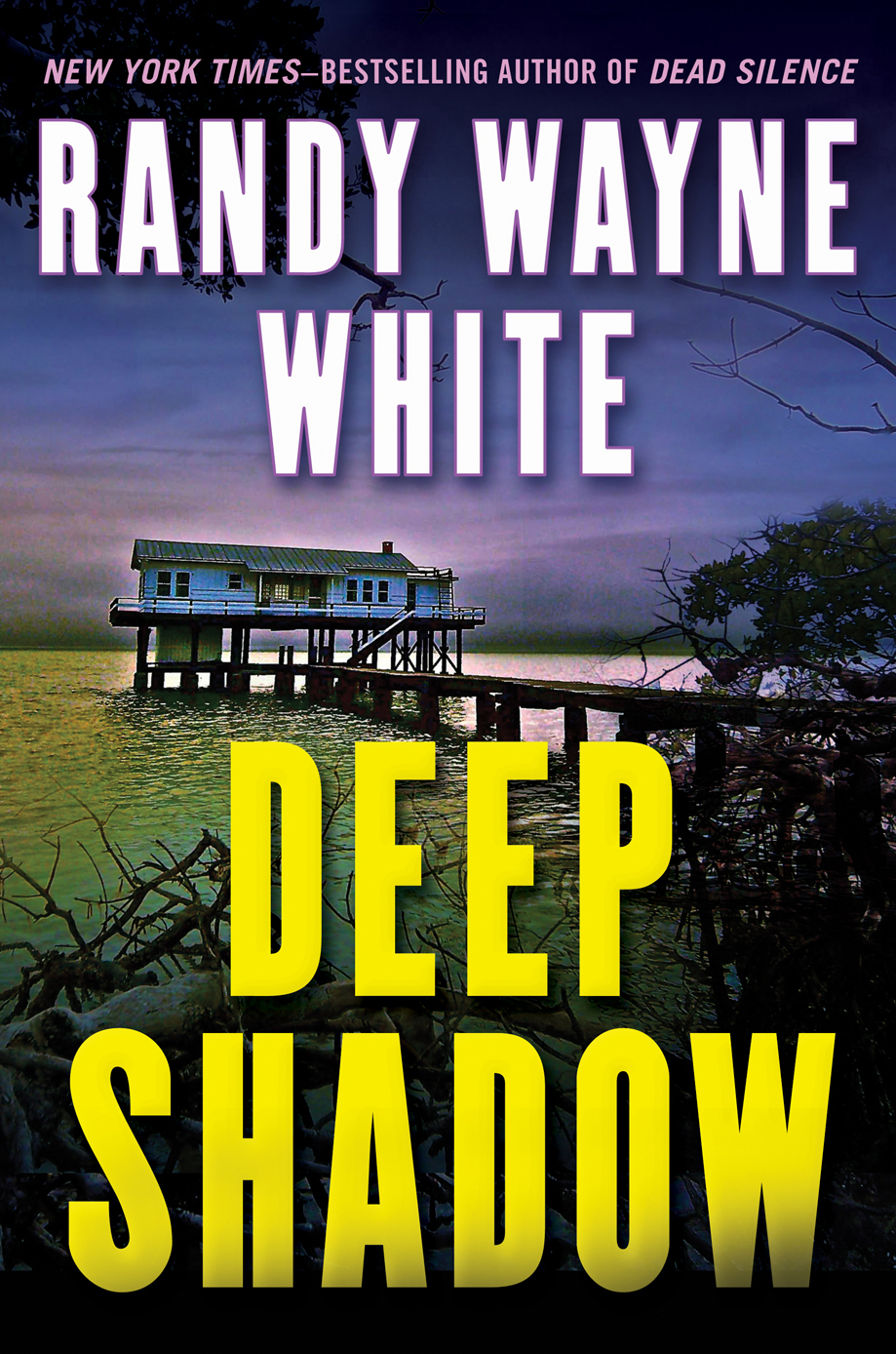 Deep Shadow By: Randy Wayne White