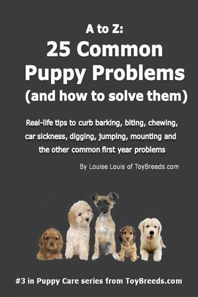 A to Z: 25 Common Puppy Problems