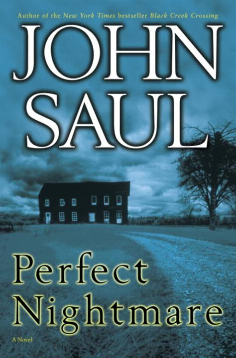 Perfect Nightmare By: John Saul