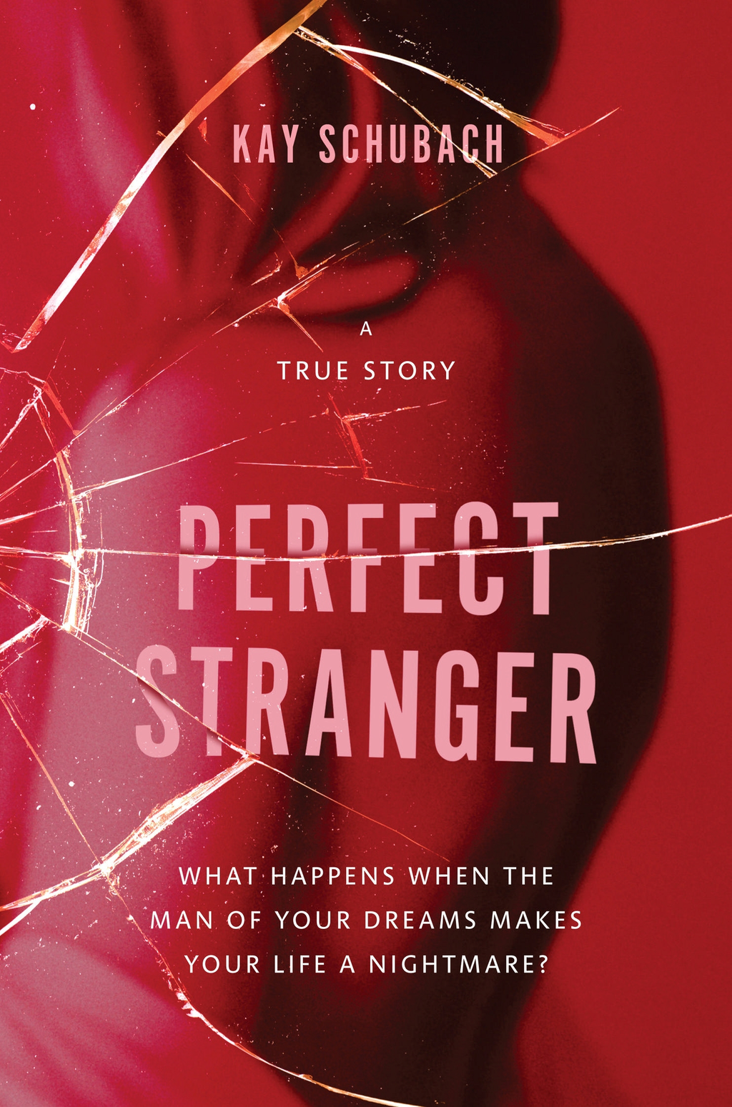 Perfect Stranger: A true story of desire and obsession By: Kay Schubach