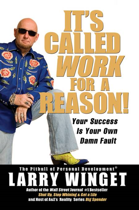 It's Called Work for a Reason!: Your Success Is Your Own Damn Fault By: Larry Winget