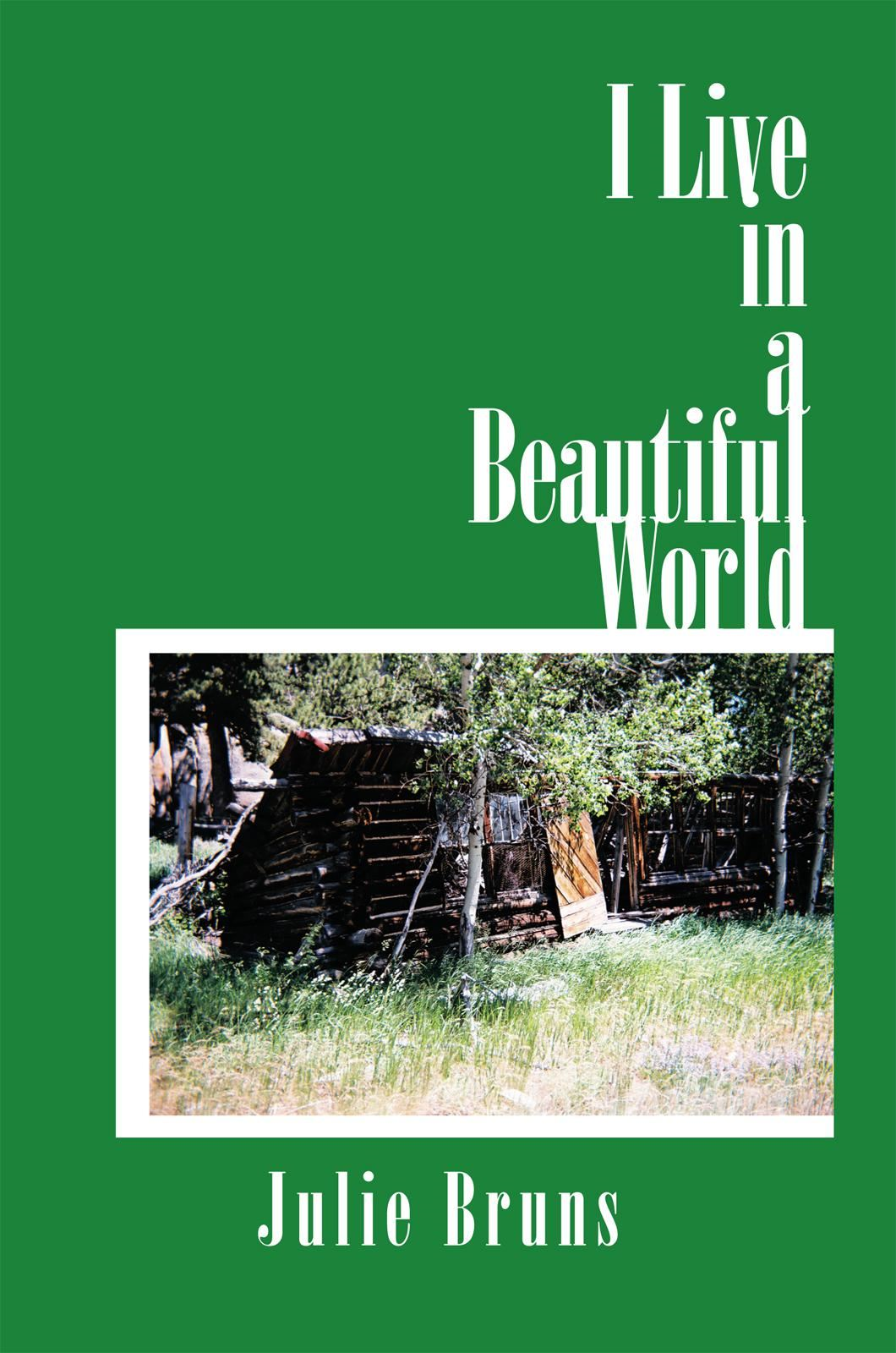 I Live in a Beautiful World By: Julie Bruns