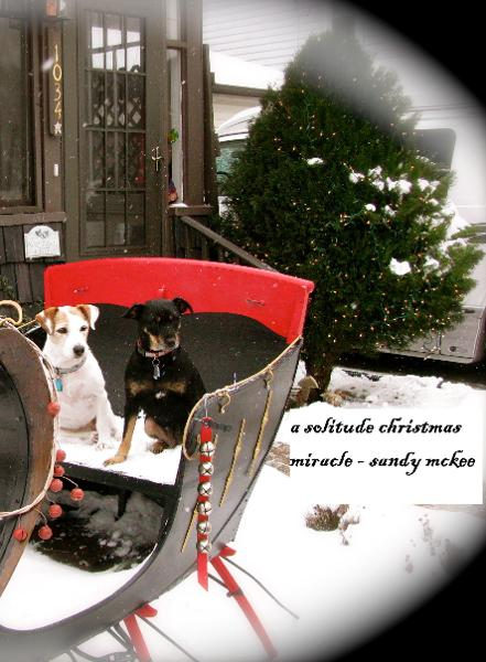 A Solitude Christmas Miracle -5th in Series-Amish Country Murder Mysteries By: Saundra McKee