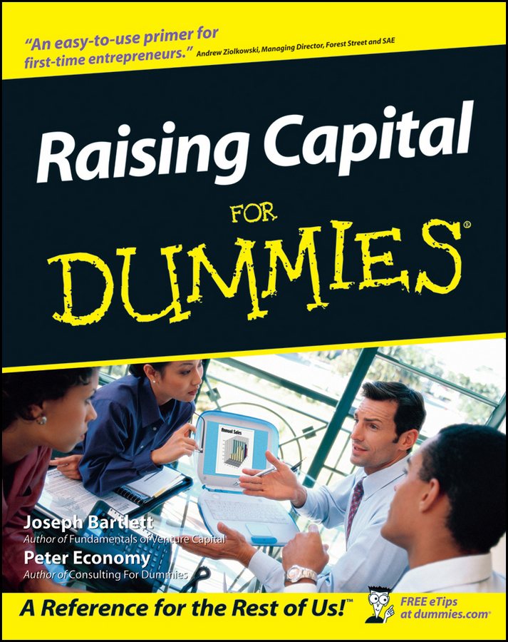 Raising Capital For Dummies By: Joseph W. Bartlett,Peter Economy