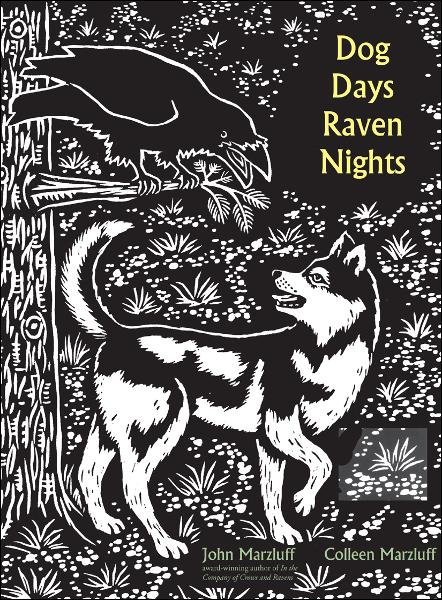 Dog Days, Raven Nights By: Bernd Heinrich,Colleen Marzluff,Evon Zerbetz,John M. Marzluff