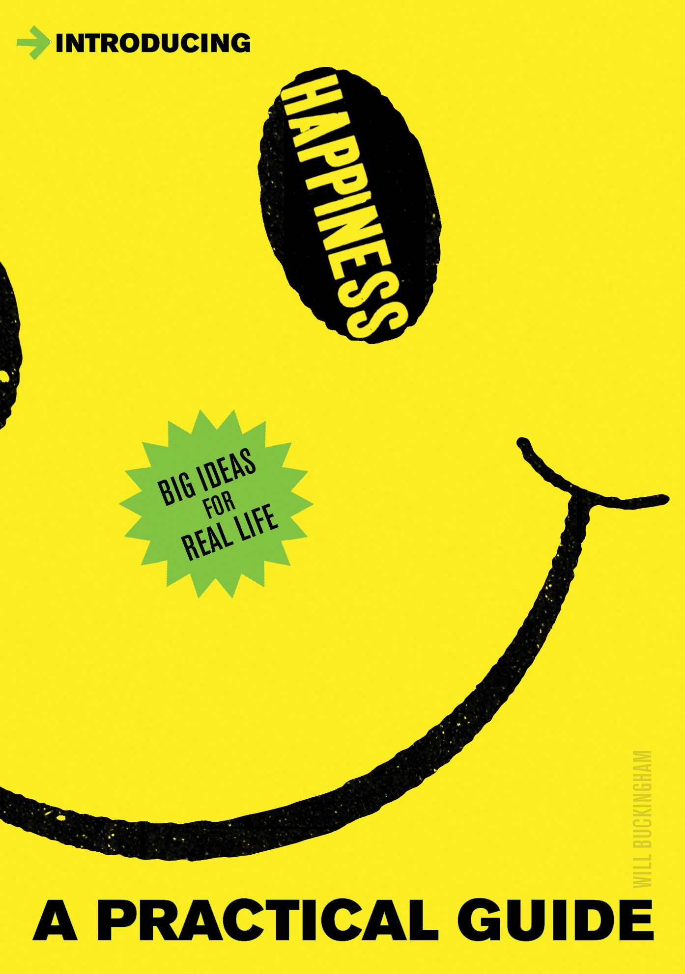 Introducing Happiness: A Practical Guide