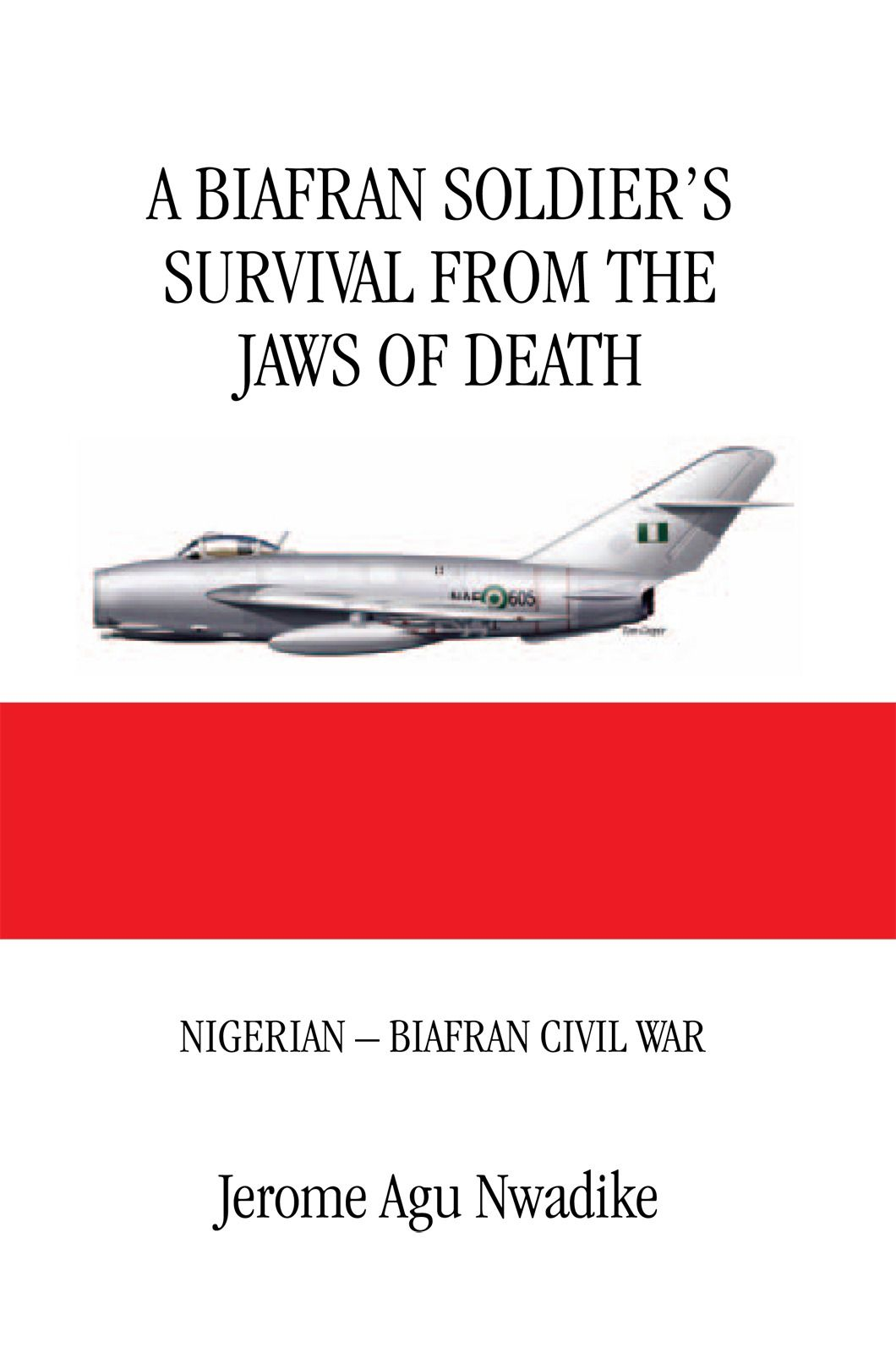 A BIAFRAN SOLDIER'S SURVIVAL FROM THE JAWS OF DEATH