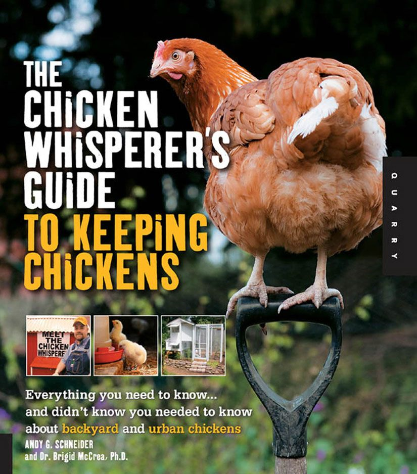 The Chicken Whisperer's Guide to Keeping Chickens: Everything You Need to Know . . . and Didn't Know You Needed to Know About Backyard and Urban Chicke By: Andy Schneider,Brigid McCrea