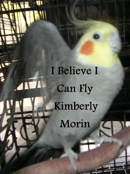 I Believe I Can Fly By: Kimberly Morin