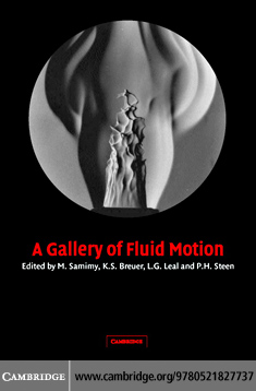 A Gallery of Fluid Motion