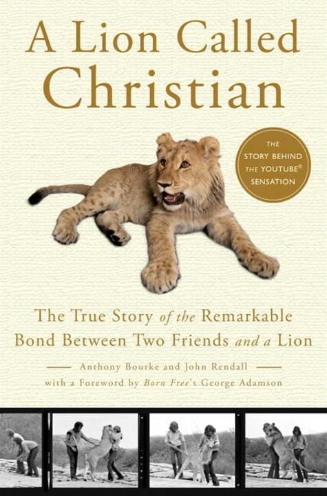 A Lion Called Christian By: Anthony Bourke,John Rendall