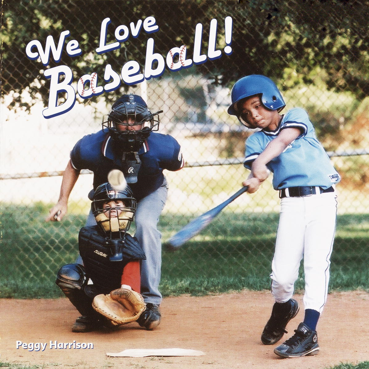 Cover Image: We Love Baseball!