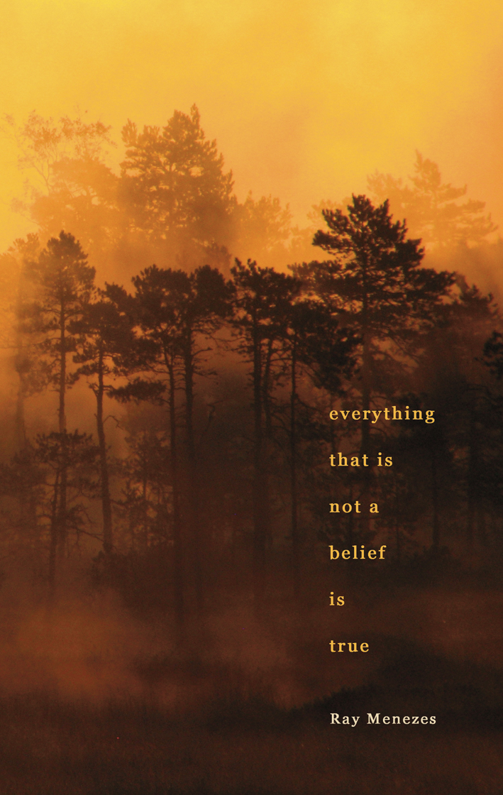 Everything That is Not a Belief is True