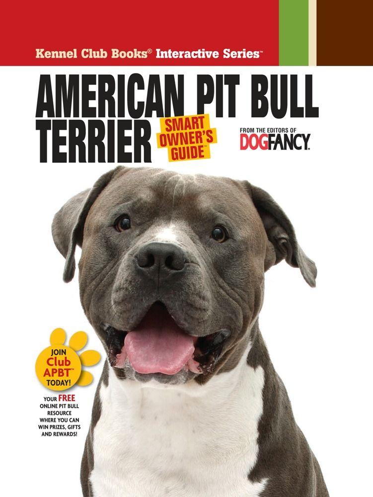 American Pit Bull Terrier By: Dog Fancy Magazine