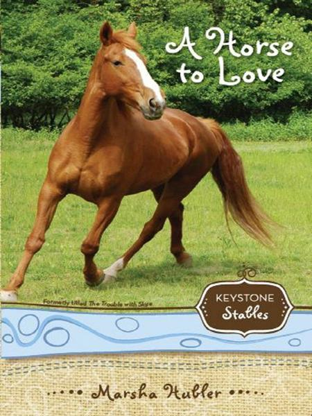 A Horse to Love By: Marsha   Hubler