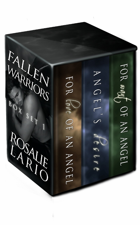 Fallen Warriors Box Set 1