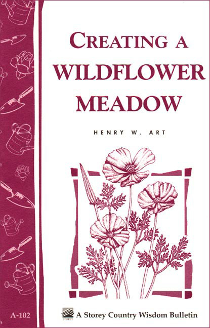 Creating a Wildflower Meadow