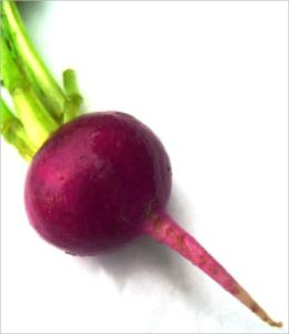 A Crash Course on How to Grow Beets
