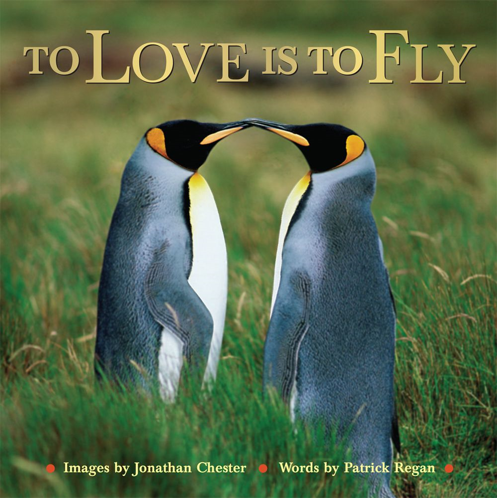 To Love Is to Fly By: Jonathan Chester,Patrick Regan