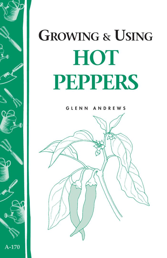 Growing & Using Hot Peppers By: Glenn Andrews